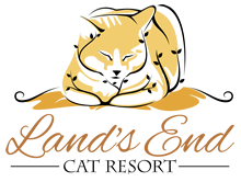 Lands End Cat Resort